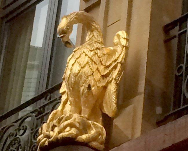 Pelican Luxembourg