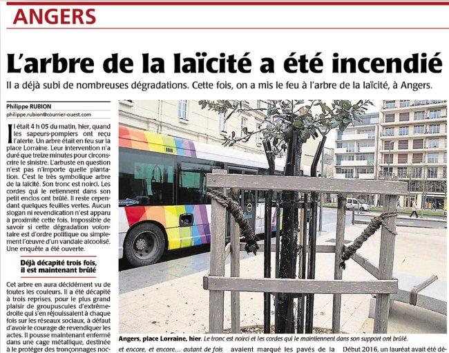 4e arbre laicite Angers