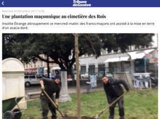 acacia maconnique Geneve